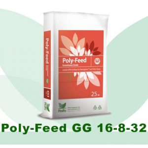 Poly-Feed 16-8-32+2Mg (Удобрение)